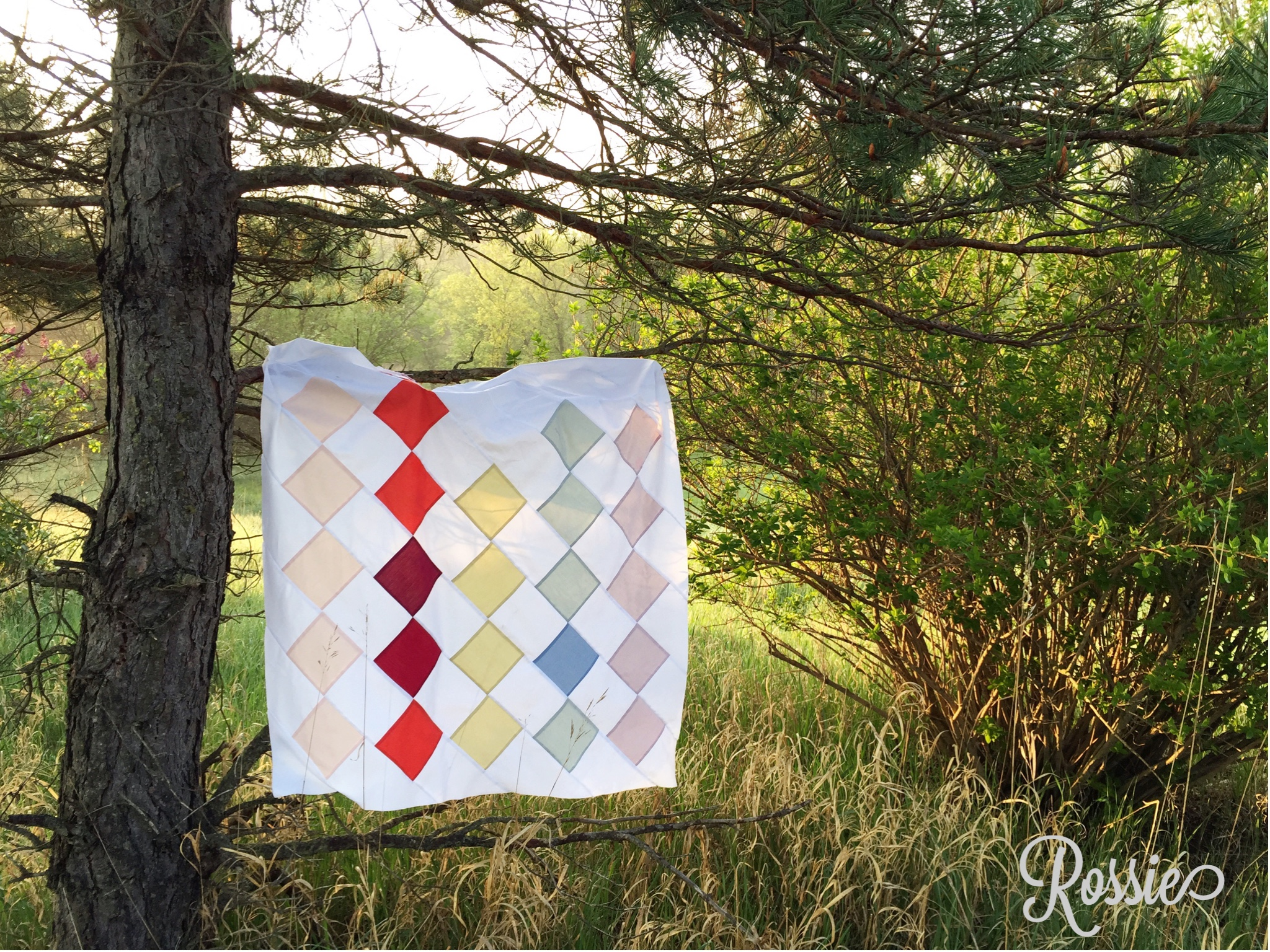 Saskia From Scandinavia (a Quilt And Free Quilt Pattern)